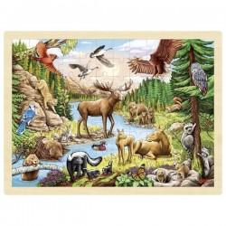 Puzzle - Ameryka Północna