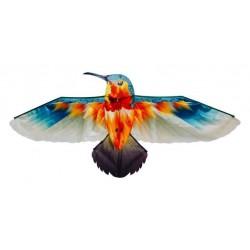 Latawiec Koliber